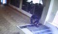 Camide ayakkabı hırsızlığı güvenlik kamerasında