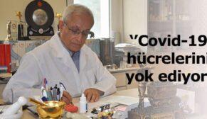 Prof. Dr. Yeşilada açıkladı