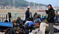 313 düzensiz göçmen yakalandı