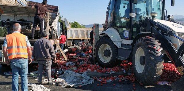 Domates yüklü kamyon devrildi