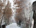 Sibirya soğukları buz sarkıtları oluşturdu