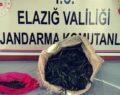 Uyuşturucu tacirine operasyon, 2 kilo esrarla yakalandı