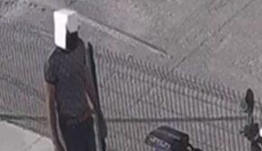 Kafasına karton geçiren şüpheli hırsız kamerada