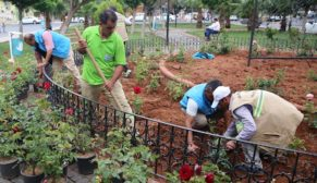 Haliliye Belediyesi, parkları yaza hazırlıyor