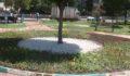 Haliliye Belediyesi, parkları çiçeklerle süslüyor