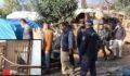 Horoz dövüşü baskını: 22 gözaltı