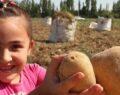 Tarım işçisi çocukalarının uzaktan eğitim sıkıntısı