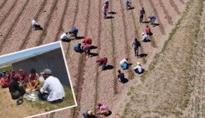 Bayram mevsimlik işçiye uğramadı