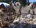 Sel bölgesine jandarmadan temizlik