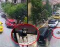 Feci olay: Taksici köpeği ezip kaçtı