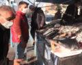 Şanlıurfa'da köpek balığı