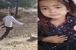 Jandarma'nın elinden kaçırılmıştı, küçük kız bulunamadı