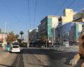 Şanlıurfa'da caddeler sokak hayvanlarına kaldı