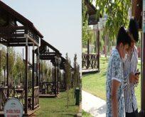 Şanlıurfa'da kamelya şarj istasyonları hizmete sunuldu