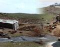 Kamyonet yan yattı: 50 koyun telef oldu