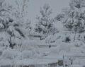 Kar kalınlığı 10 santimetreyi buldu