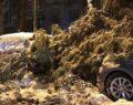 Kar kalınlığı 30 cm çıktı: 7 çatı çöktü, 106 araç zarar gördü