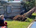 Araç ağaca çarptı: 4 yaralı