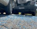 Şanlıurfa'da kamyonet ile minibüs çarpıştı