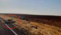 Şanlıurfa'da kaza: Çok sayıda keçi telef oldu