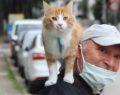 Gittiği her yerde kedisini omuzunda gezdiriyor