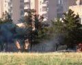 Şanlıurfa'da çocuklar ağaçlık alanı ateşe verdi