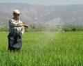 Çiftçilere  önemli ÇKS duyurusu