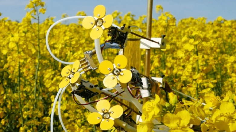 Bakın arılar için ne yaptılar!
