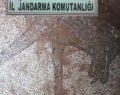Şanlıurfa'da kaçak kazıda Roma dönemine ait mozaik bulundu