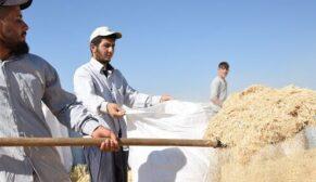 Saman işçiliği yaparak hayalini gerçekleştirdi