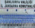 Şanlıurfa'da çok sayıda kaçak sigara ele geçirildi
