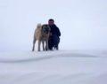 Sivas'ta kar kalınlığı 2 metreyi buldu