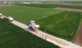 Suruç'ta yeni yollar asfalt serimine hazırlanıyor