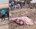 Tren faciası: 8 ölü, 97 yaralı