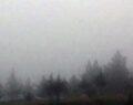 Urfa'da yoğun sis hayatı olumsuz etkiledi