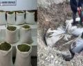1 ton 16 kilogram uyuşturucu ele geçirildi