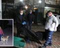 Lüks villada ölü bulunan dört kişinin kimlikleri belli oldu