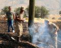 Hekimhan'da çıkan yangında 50 hektarlık alan zarar gördü