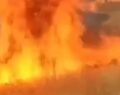 Buğday tarlası yanarak kül oldu