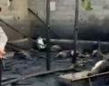 Urfa'da ahır yangını: Çok sayıda hayvan telef oldu